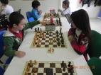 torneo-scacchi-junior-2012-13